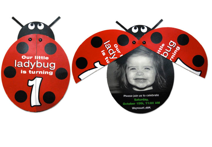 Ladybug Party – Ladybug Invitations 1st Birthday